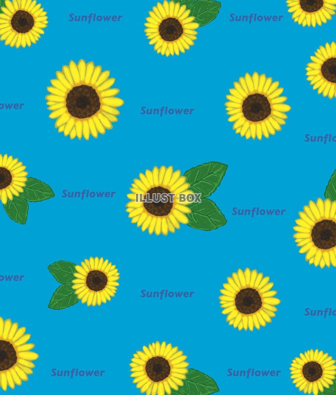 無料イラスト 向日葵の壁紙 Jpg