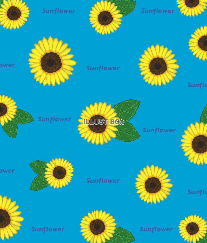 無料イラスト 向日葵の壁紙 Png