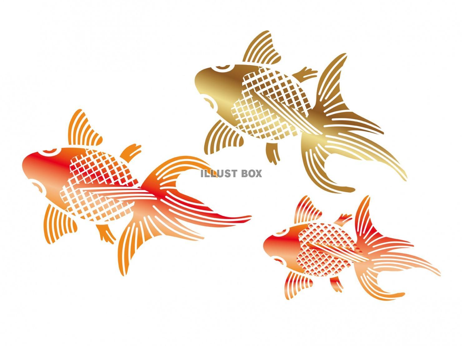 無料イラスト 和柄 金魚の納涼イラスト