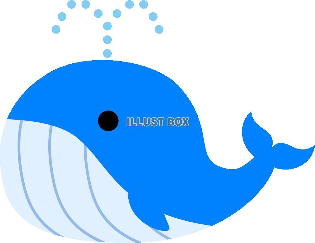 無料イラスト クジラ