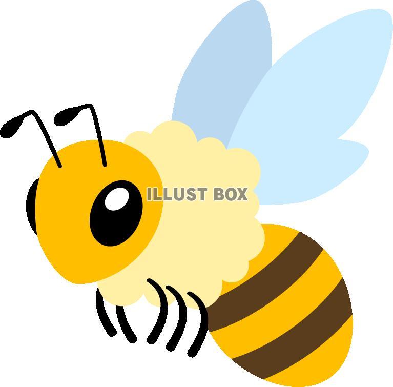 無料イラスト ミツバチ
