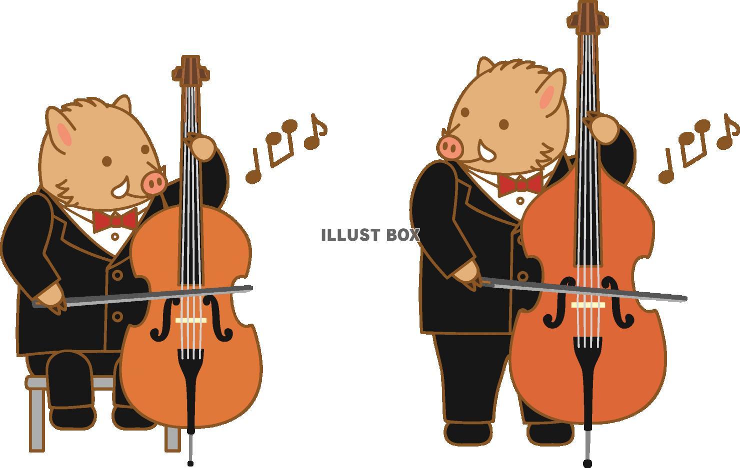 無料イラスト いのししチェロコントラバス演奏