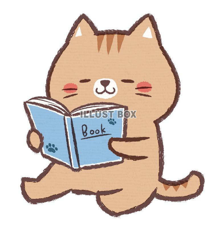 無料イラスト 読書ネコ