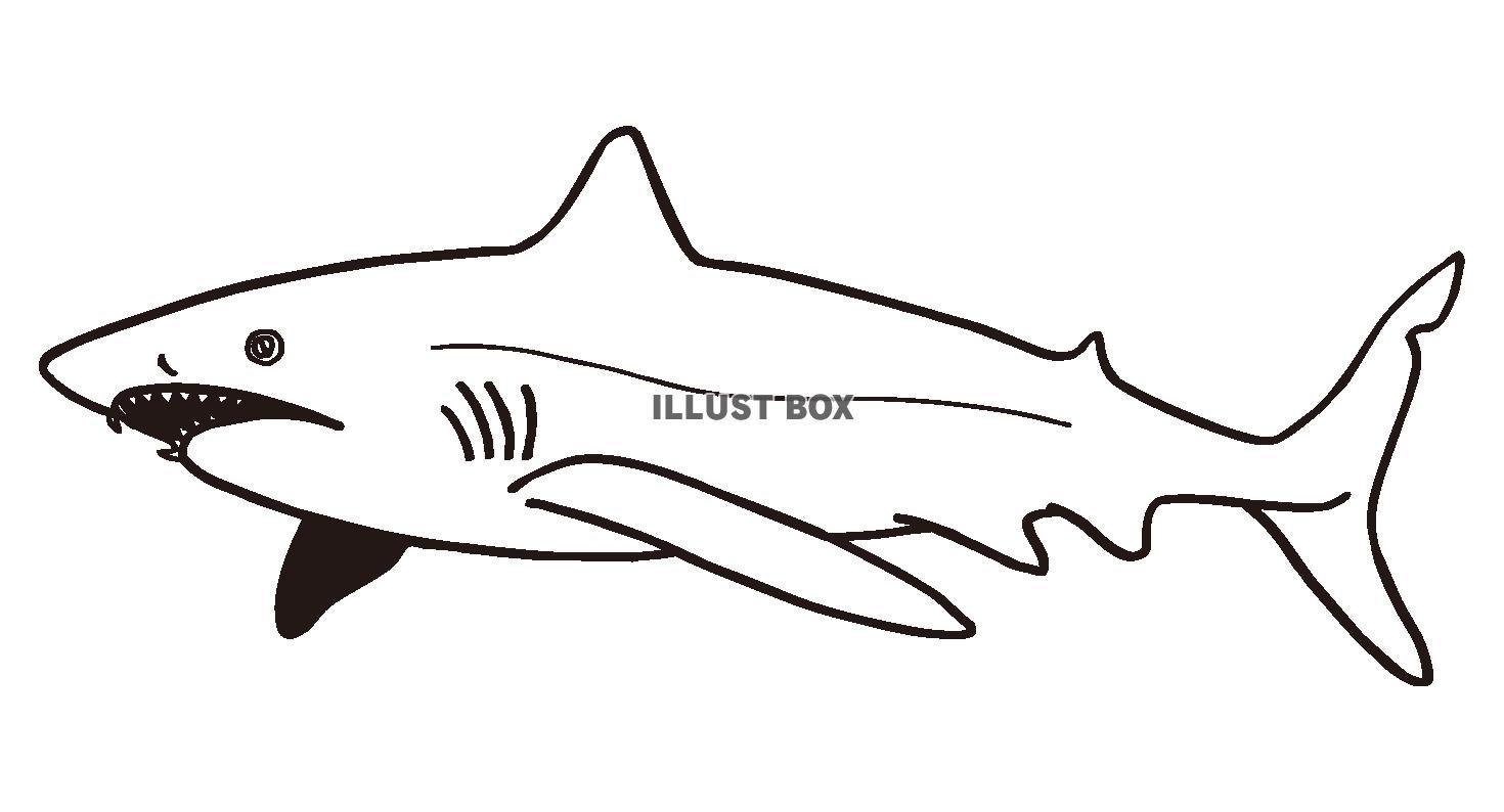 無料イラスト サメのイラスト