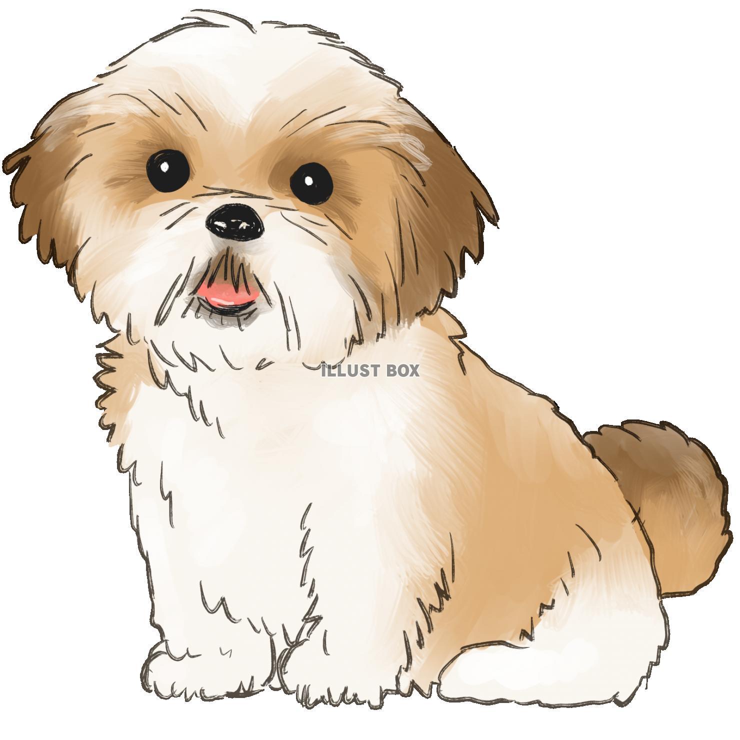 無料イラスト シーズ犬
