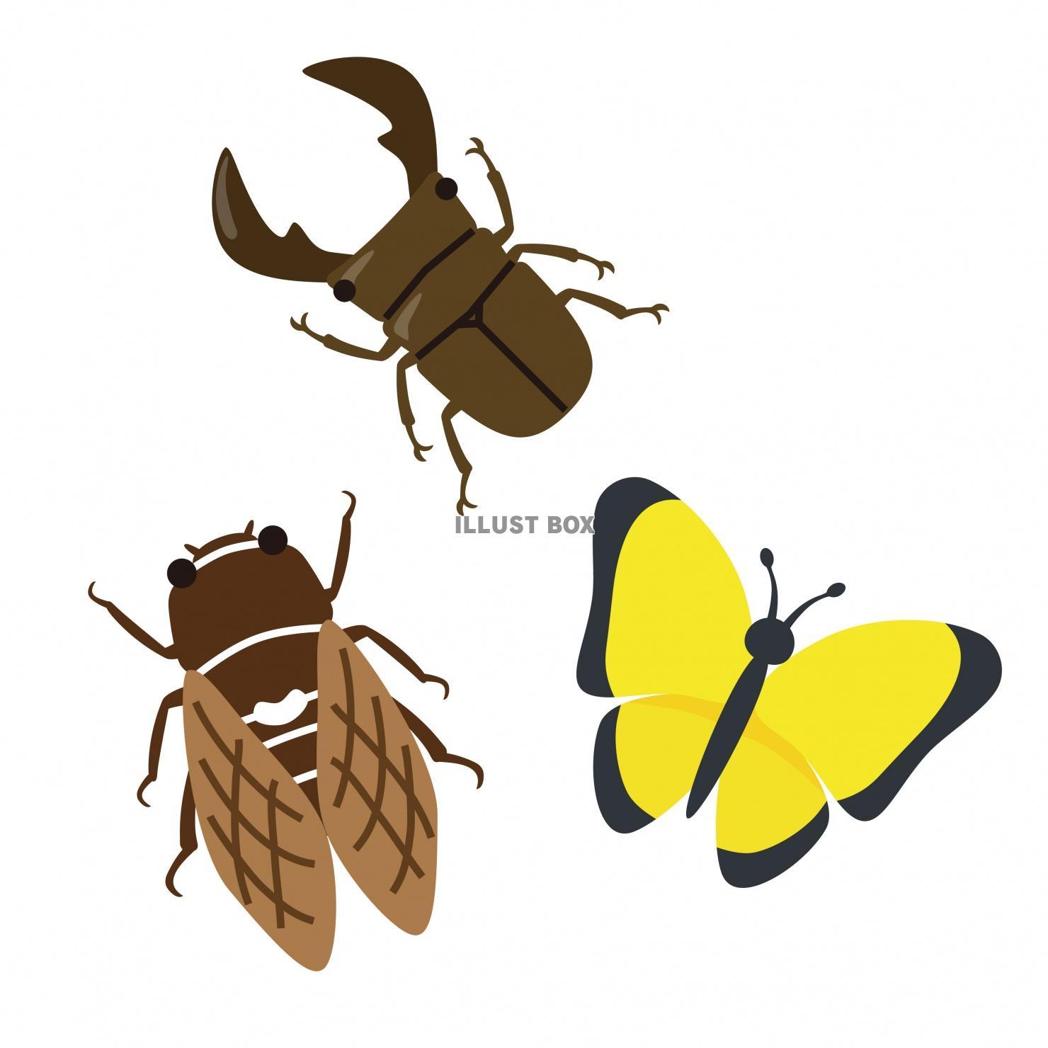 無料イラスト 昆虫