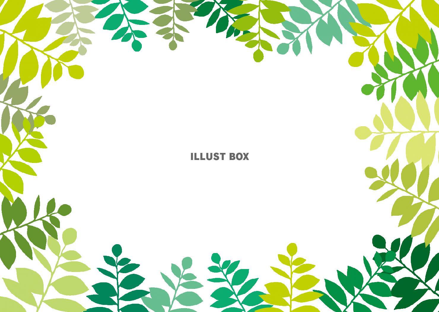 無料イラスト おしゃれフレーム枠飾り枠囲み枠葉背景壁紙植物葉っぱ 緑 イラ