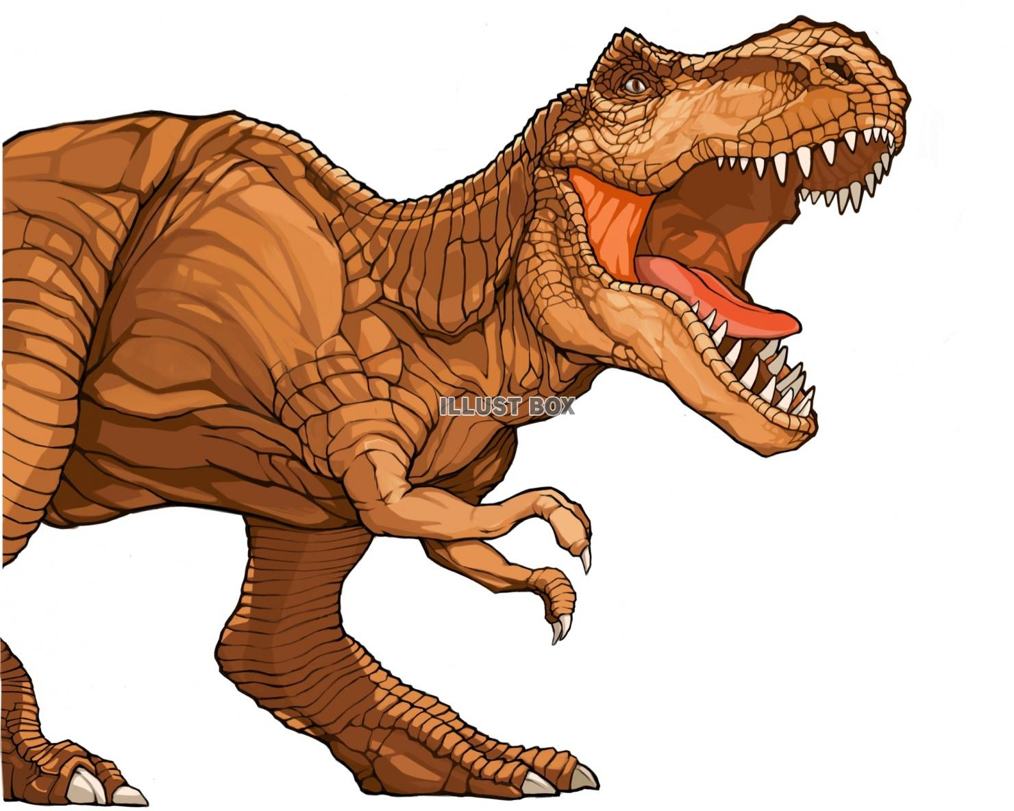 ティラノサウルスの画像 p1_28