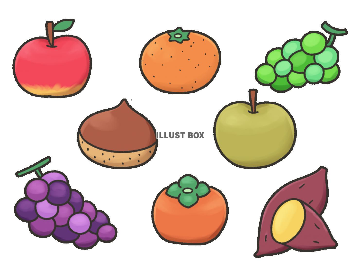 果物 イラスト の 秋
