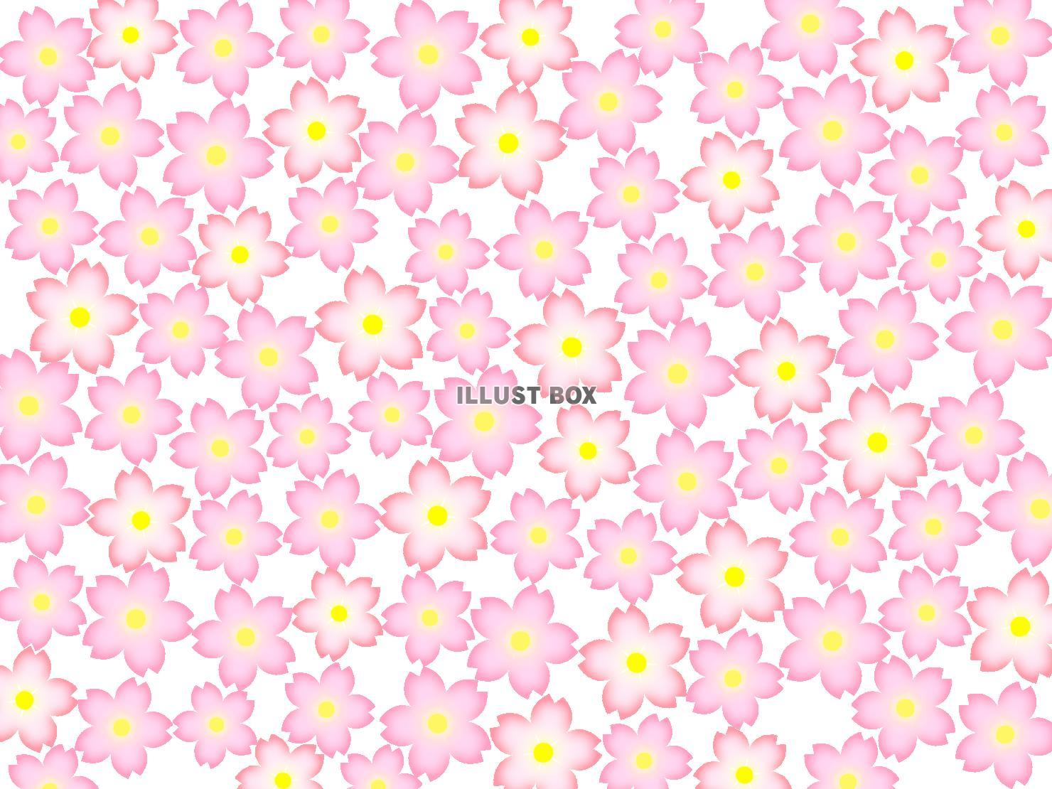 無料イラスト 桜の花模様壁紙シンプル背景素材イラスト 透過png
