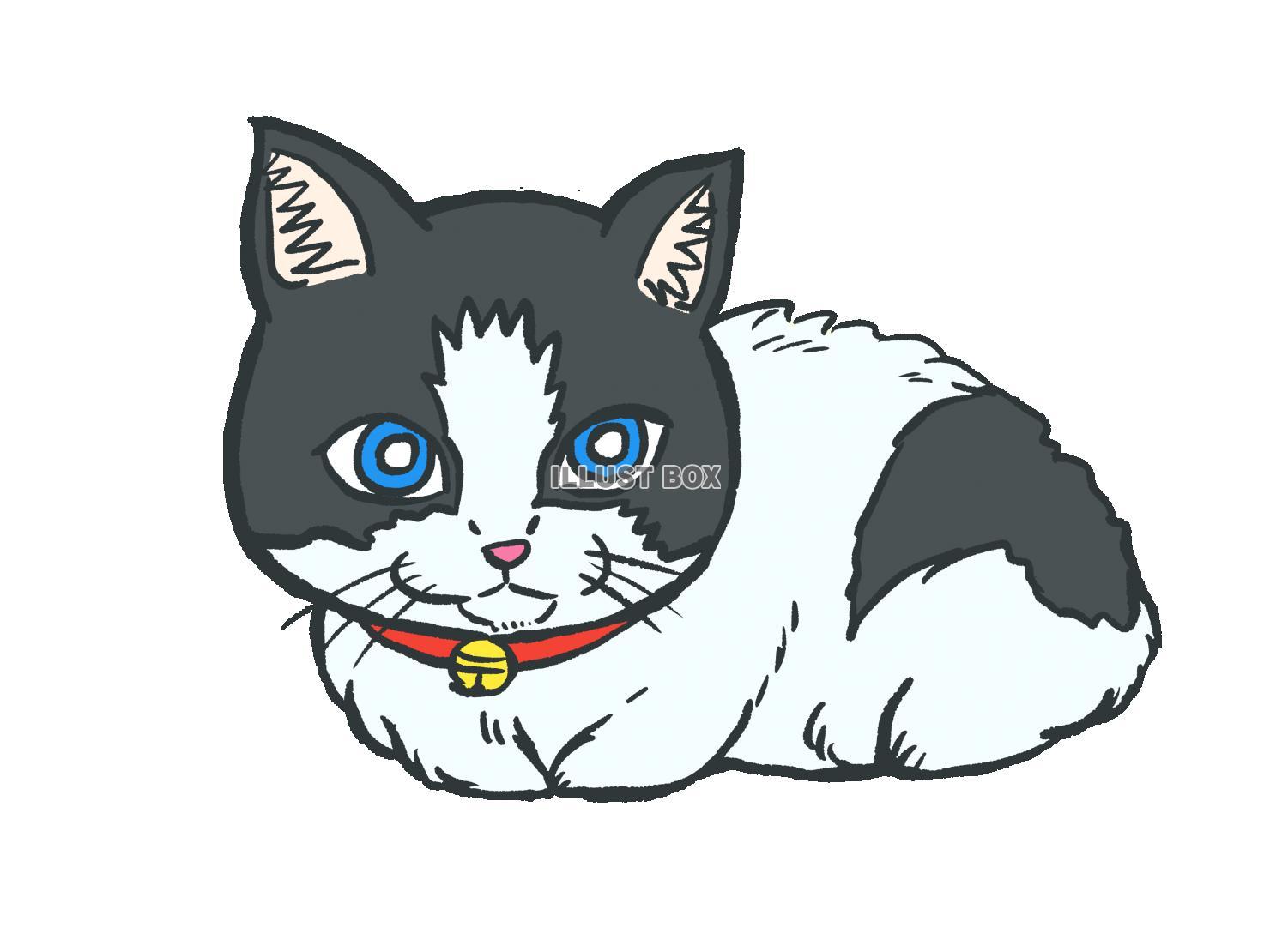 無料イラスト 白黒 猫 ネコ