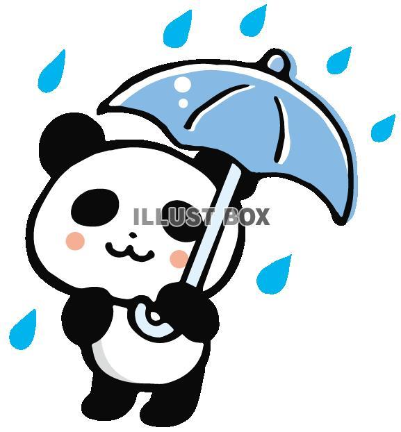 雨の日パンダ