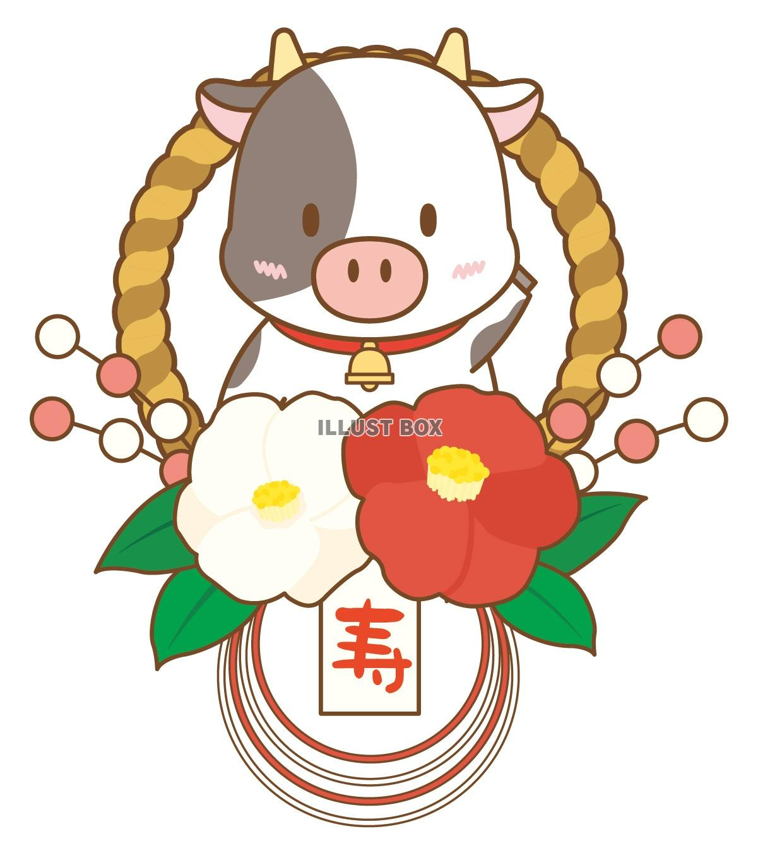 無料イラスト 正月飾りになった牛さん(丑、うし、正月、干支、年賀状、しめ縄...